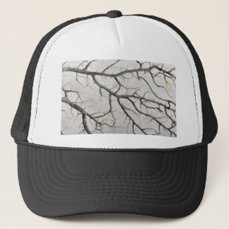 Macro photo of a dry gorgonian coral. trucker hat