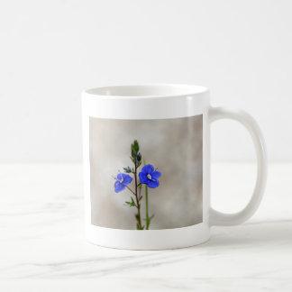 Macro photo of a  german speedwell coffee mug