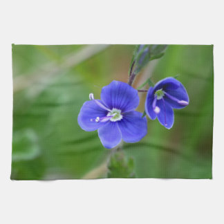 Macro photo of a  german speedwell kitchen towels