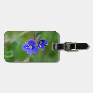 Macro photo of a  german speedwell luggage tag