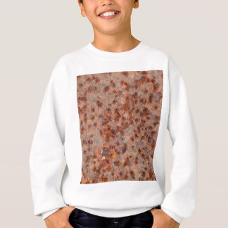 Macro photo of a rusty iron sheet. sweatshirt