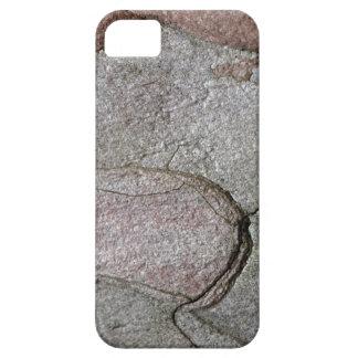 Macro photo of pine bark iPhone 5 cover