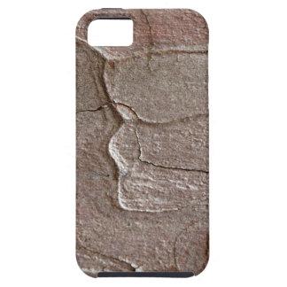 Macro photo of pine bark iPhone 5 covers
