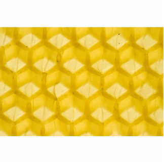 Macro Photo Of The Honeycomb Template Acrylic Cut Outs