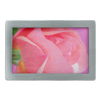 Macro pink rose flower rectangular belt buckle