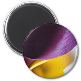 Macro shot of callas 2 inch round magnet
