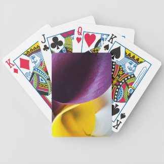 Macro shot of callas bicycle playing cards
