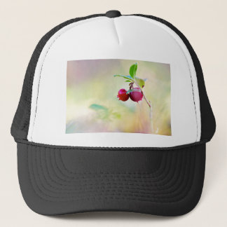 Macro shot of cowberry growing in forest. trucker hat