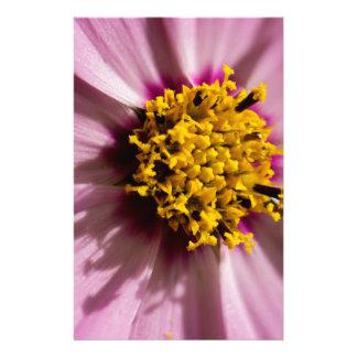 Macro shot of fresh pink flower stationery