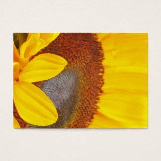 Macro Sunflower Profile Card