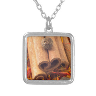 Macro view of the cinnamone, peppercorn and saffro silver plated necklace