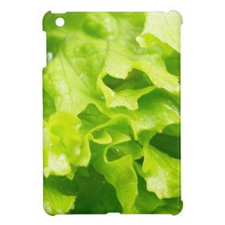 Macro view of the leaves of lettuce in a salad iPad mini covers