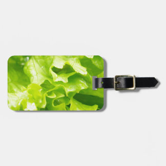 Macro view of the leaves of lettuce in a salad luggage tag