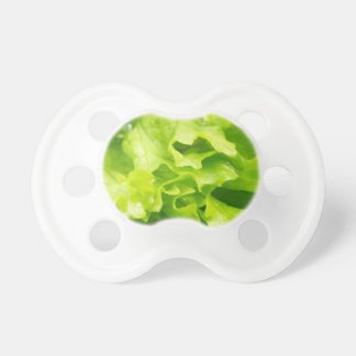 Macro view of the leaves of lettuce in a salad pacifier