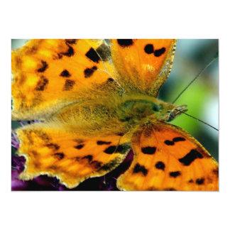 Macro Yellow Butterfly Card