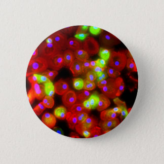 Macrophage Cells Science Art 2 Inch Round Button