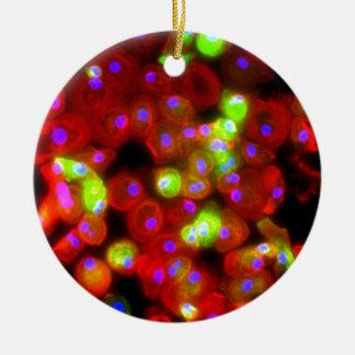Macrophage Cells Science Art Ceramic Ornament