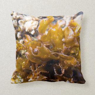 MacroPillow: Sea Kelp Baby & Fuscha Zinnia Throw Pillow