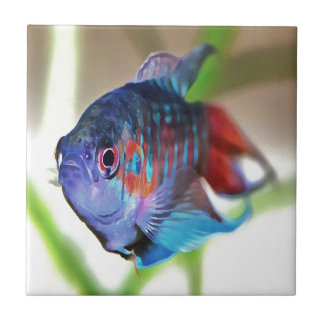 Macropodus opercularis – Paradise Fish Ceramic Tiles