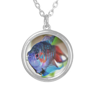 Macropodus opercularis – Paradise Fish Silver Plated Necklace