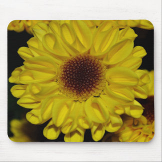 Macros Sunflower Mum Mouse Pad