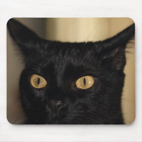 Mad cat mouse pad