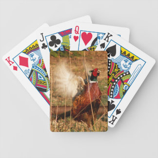 Mad Pheasant Playing Cards