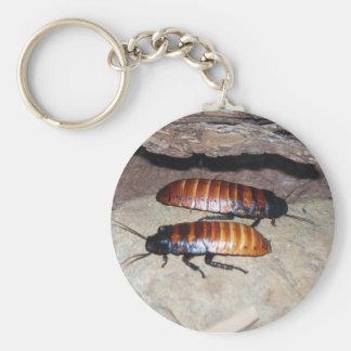 Madagascar Hissing Cockroach Keychain