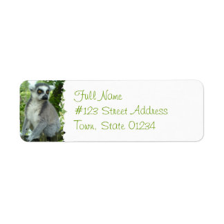 Madagascar Lemur Return Address Label