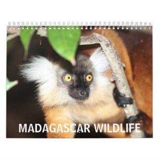 Madagascar Wildlife Wall Calendar