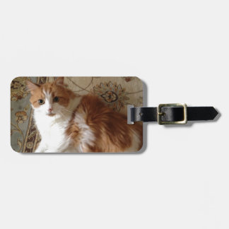 Madalin the relaxing cat luggage tag