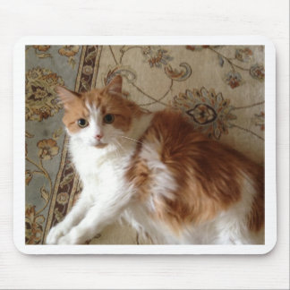 Madalin the relaxing cat mouse pad