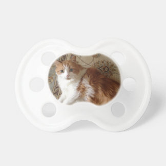Madalin the relaxing cat pacifier