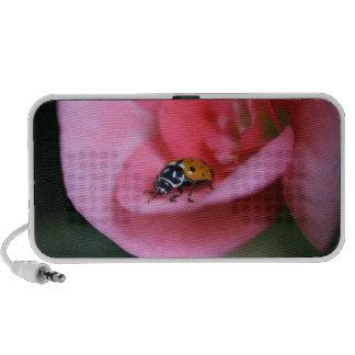 Madame Bug Haut-parleurs Portables