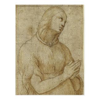 Maddalena Postcard