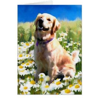 MADDIE heARTdog Golden Card
