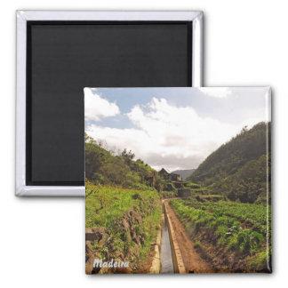 Madeira magnet- Levada do Caniçal Square Magnet
