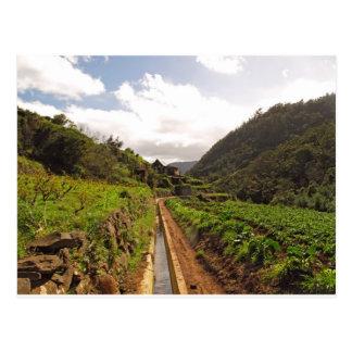Madeira postcard