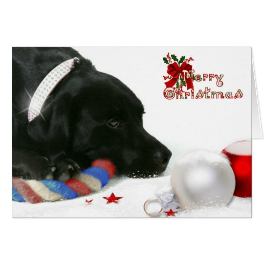 Madison the Black Labrador Christmas Card