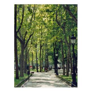 Madrid Park Postcard