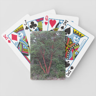 Madrona tree bicycle playing cards