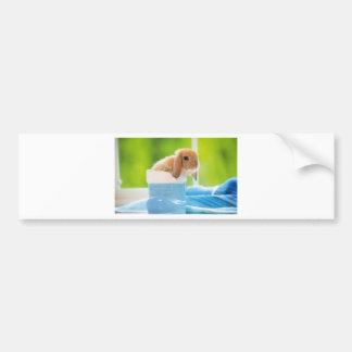mag in rabbit ver.3 bumper sticker