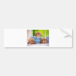 mag in rabbits bumper sticker