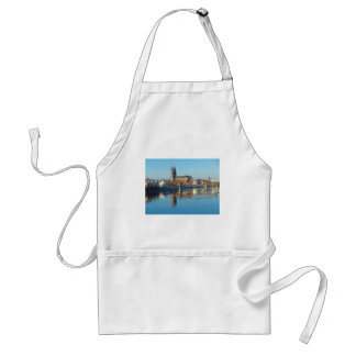 Magdeburg Cathedral with river Elbe 01 Standard Apron
