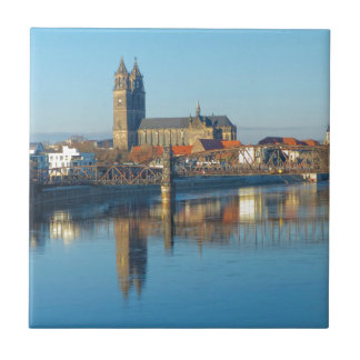 Magdeburg Cathedral with river Elbe 01 Tile