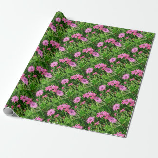 Magenta African Daisies Wrapping Paper