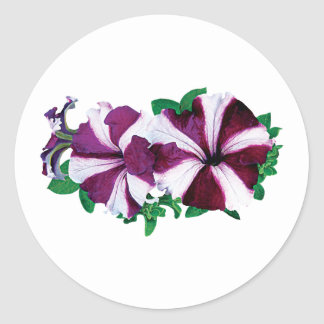 Magenta and White Petunias Classic Round Sticker