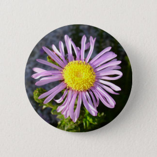 Magenta Aster - A Star of Love and Fidelity 2 Inch Round Button
