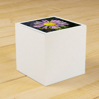 Magenta Aster - A Star of Love and Fidelity Favor Box