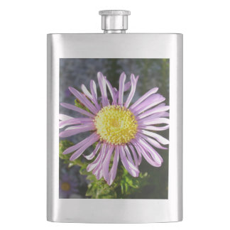 Magenta Aster - A Star of Love and Fidelity Hip Flask